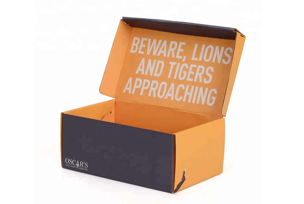 shoe storage box